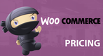 WooCommerce Pricing 2019: The Cost of an Online Store